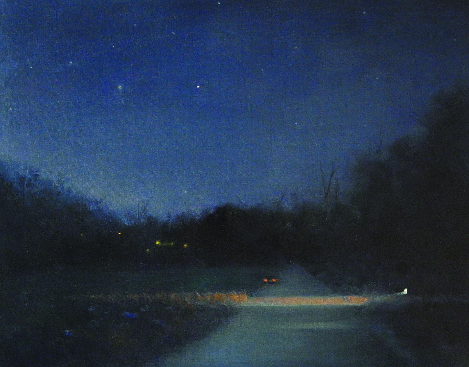 Notturno I, 2014 olio su tela, cm 60 x 80